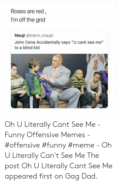 "Dad, Funny, and John Cena: Roses are red,  I'm off the grid  Mauji @mann_maujii  John Cena Accidentally says ""U cant see me""  to a blind kid Oh U Literally Cant See Me - Funny Offensive Memes - #offensive #funny #meme - Oh U Literally Can't See Me The post Oh U Literally Cant See Me appeared first on Gag Dad."