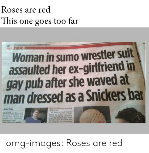 sumo: Roses are red  This one goes too far  NEW  Woman in sumo wrestler suit  assaulted her ex-girlfriend in  gay pub after she waved at  man dressed as a Snickers ba omg-images:  Roses are red
