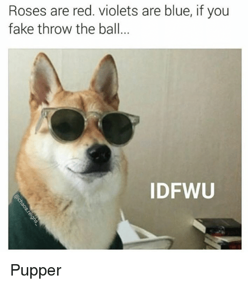 Throwes: Roses are red. violets are blue, if you  fake throw the ball  ID FWU Pupper