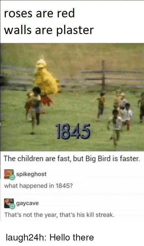 Big Bird: roses are red  walls are plaster  1845 T  The children are fast, but Big Bird is faster.  spikeghost  what happened in 1845?  gaycave  That's not the year, that's his kill streak. laugh24h:  Hello there