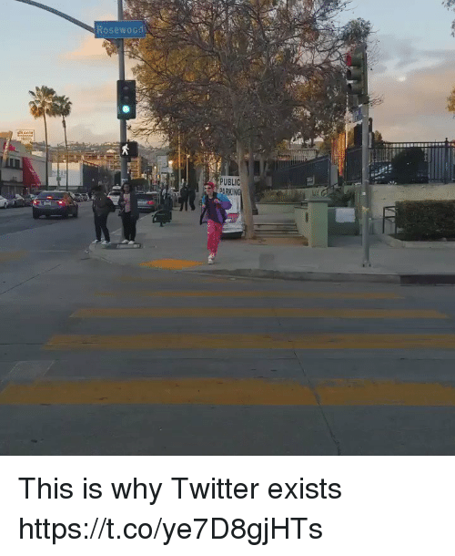 Twitter, Girl Memes, and Rosewood: Rosewood  PUBLIC This is why Twitter exists https://t.co/ye7D8gjHTs
