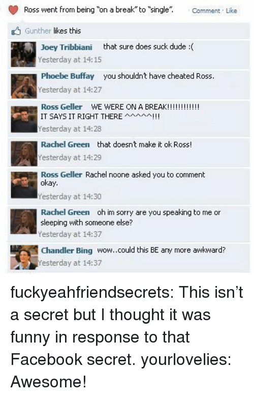 "Phoebe Buffay: Ross went from being o a break to ""single"" Comment Like  Gunther likes this  loey Tribbiani that sure does suck dude :(  Yesterday at 14: 15  Phoebe Buffay you shouldnt have cheated Ross.  Yesterday at 14:27  IT SAYS IT RIGHT THEREAI!  Yesterday at 14:28  Rachel Green that doesnt make it ok Ross!  Yesterday at 14:29  Ross Geller Rachel noone asked you to comment  okay  Yesterday at 14:30  Rachel Green oh im sorry are you speaking to me or  sleeping with someone else?  esterday at 14:37  Chandler Bing wow.could this BE any more awkward?  esterday at 14:37 fuckyeahfriendsecrets:  This isn't a secret but I thought it was funny in response to that Facebook secret. yourlovelies:  Awesome!"