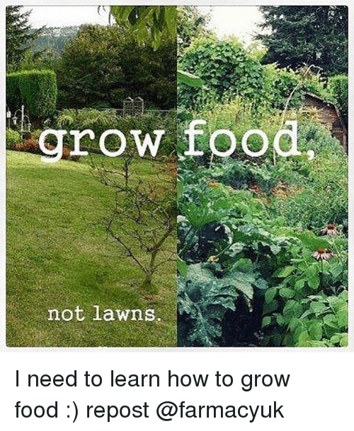 Rowing: row food  not lawns I need to learn how to grow food :) repost @farmacyuk