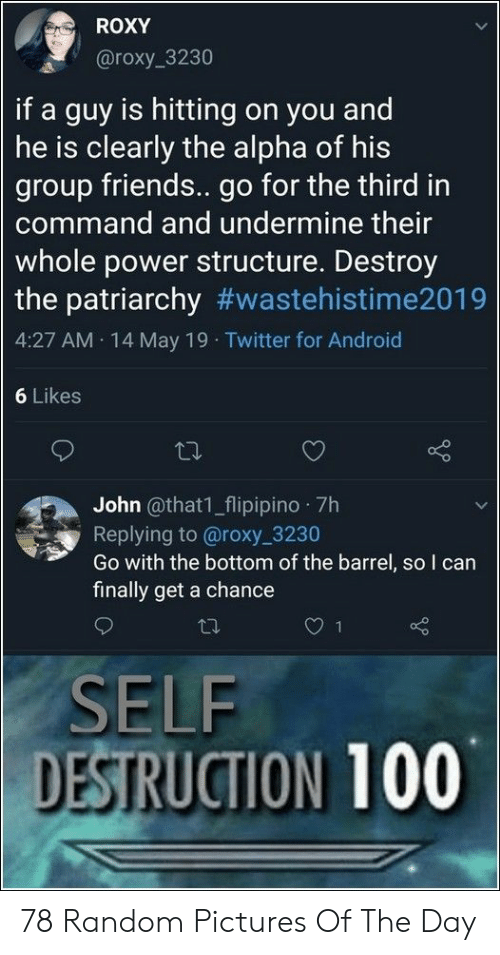 Android, Friends, and Twitter: ROXY  @roxy 3230  if a guy is hitting on you and  he is clearly the alpha of his  group friends.. go for the third in  command and undermine their  whole power structure. Destroy  the patriarchy #wastehistime2019  4:27 AM 14 May 19 Twitter for Android  6 Likes  John @that1_flipipino 7h  Replying to @roxy 3230  Go with the bottom of the barrel, so I can  finally get a chance  SELF  DESTRUCTION 100 78 Random Pictures Of The Day