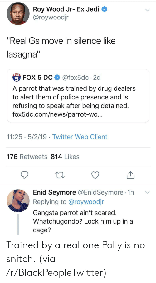 """gangsta: Roy Wood Jr- Ex Jedi  @roywoodjr  """"Real Gs move in silence like  lasagna  台FOX 5 DC $ @fox5dc . 2d  A parrot that was trained by drug dealers  to alert them of police presence and is  refusing to speak after being detained  fox5dc.com/news/parrot-wo  11:25 5/2/19 - Twitter Web Client  176 Retweets 814 Likes  Enid Seymore @EnidSeymore 1h v  Replying to @roywoodjr  Gangsta parrot ain't scared  Whatchugondo? Lock him up in a  cage? Trained by a real one Polly is no snitch. (via /r/BlackPeopleTwitter)"""