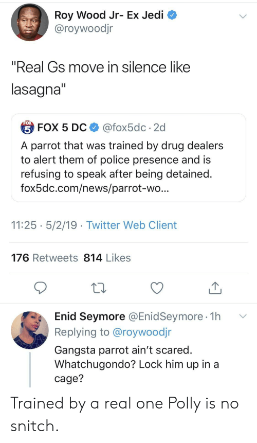"""Gangsta, Jedi, and News: Roy Wood Jr- Ex Jedi  @roywoodjr  """"Real Gs move in silence like  lasagna  台FOX 5 DC $ @fox5dc . 2d  A parrot that was trained by drug dealers  to alert them of police presence and is  refusing to speak after being detained  fox5dc.com/news/parrot-wo  11:25 5/2/19 - Twitter Web Client  176 Retweets 814 Likes  Enid Seymore @EnidSeymore 1h v  Replying to @roywoodjr  Gangsta parrot ain't scared  Whatchugondo? Lock him up in a  cage? Trained by a real one Polly is no snitch."""