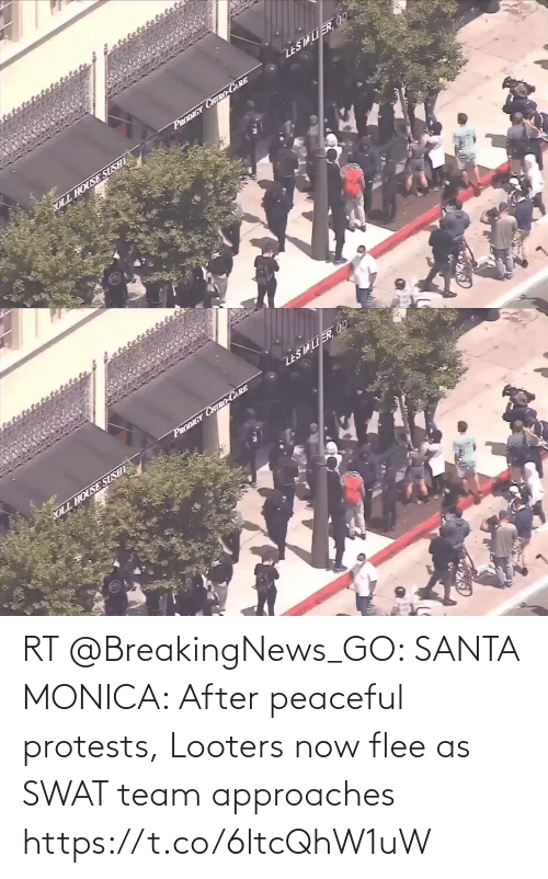 team: RT @BreakingNews_GO: SANTA MONICA: After peaceful protests, Looters now flee as SWAT team approaches https://t.co/6ltcQhW1uW