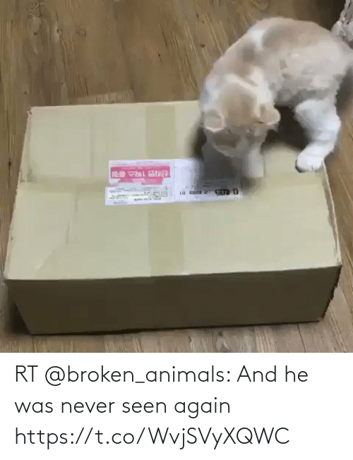 He Was: RT @broken_animals: And he was never seen again https://t.co/WvjSVyXQWC