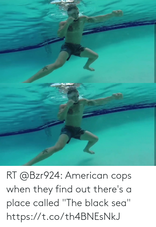 """called: RT @Bzr924: American cops when they find out there's a place called """"The black sea"""" https://t.co/th4BNEsNkJ"""