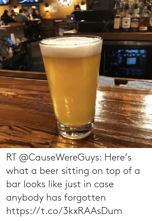 In Case: RT @CauseWereGuys: Here's what a beer sitting on top of a bar looks like just in case anybody has forgotten https://t.co/3kxRAAsDum