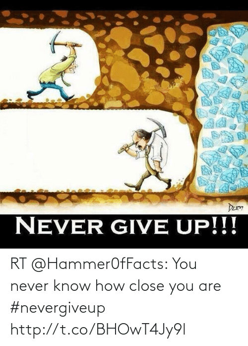 you never know: RT @Hammer0fFacts: You never know how close you are #nevergiveup http://t.co/BHOwT4Jy9l