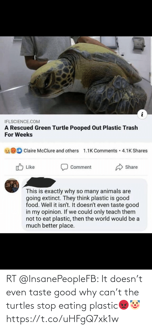 turtles: RT @InsanePeopleFB: It doesn't even taste good why can't the turtles stop eating plastic😡🤡 https://t.co/uHFgQ7xk1w