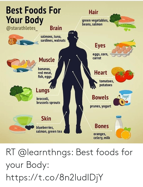 Body: RT @learnthngs: Best foods for your Body: https://t.co/8n2ludIDjY