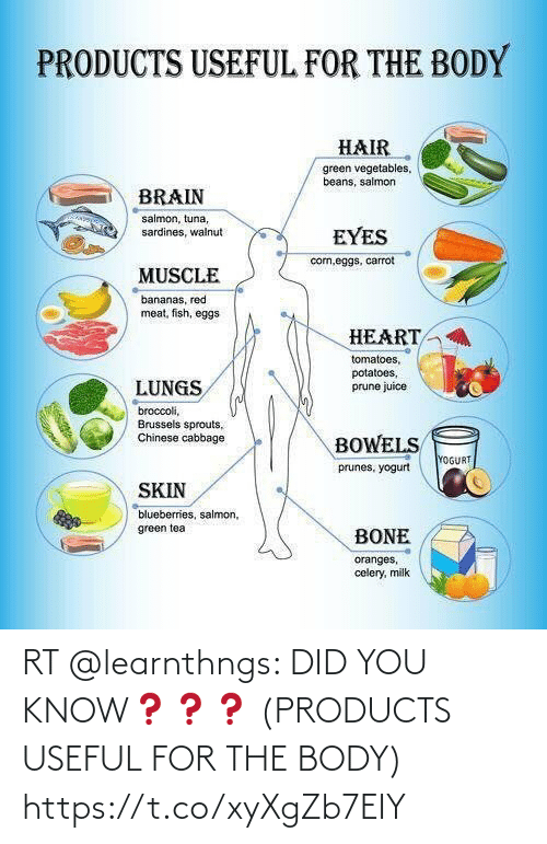 Body: RT @learnthngs: DID YOU KNOW❓❓❓ (PRODUCTS USEFUL FOR THE BODY) https://t.co/xyXgZb7EIY