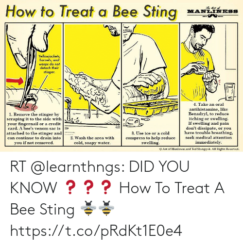 treat: RT @learnthngs: DID YOU KNOW ❓❓❓ How To Treat A Bee Sting 🐝🐝 https://t.co/pRdKt1E0e4