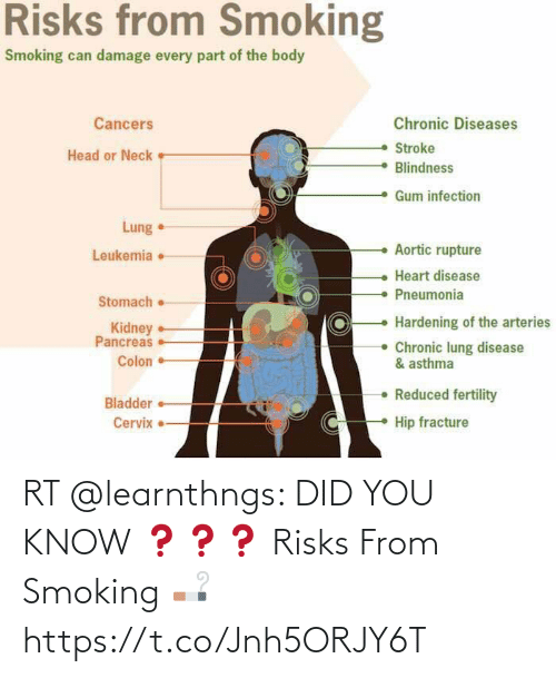 Smoking: RT @learnthngs: DID YOU KNOW ❓❓❓ Risks From Smoking 🚬 https://t.co/Jnh5ORJY6T