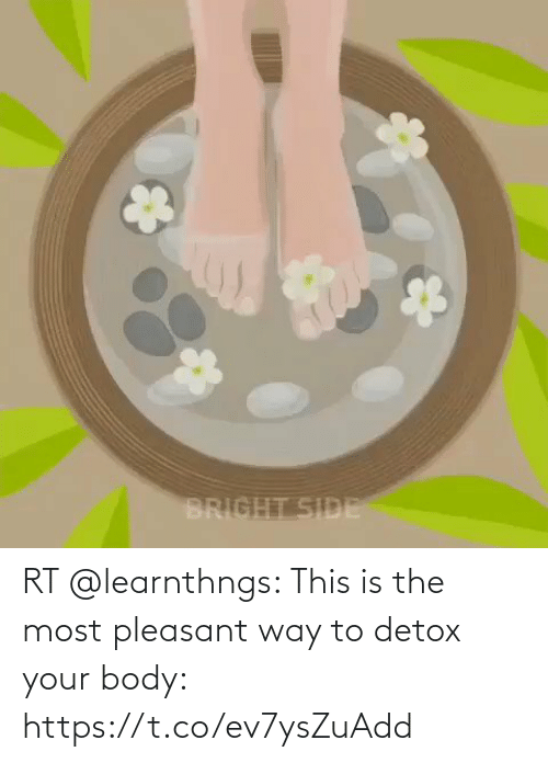 Body: RT @learnthngs: This is the most pleasant way to detox your body: https://t.co/ev7ysZuAdd