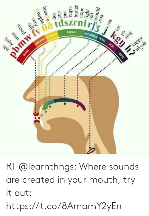 In Your Mouth: RT @learnthngs: Where sounds are created in your mouth, try it out: https://t.co/8AmamY2yEn