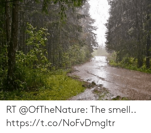 Smell, The, and The Smell: RT @OfTheNature: The smell.. https://t.co/NoFvDmgltr