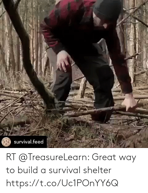 build a: RT @TreasureLearn: Great way to build a survival shelter https://t.co/Uc1POnYY6Q