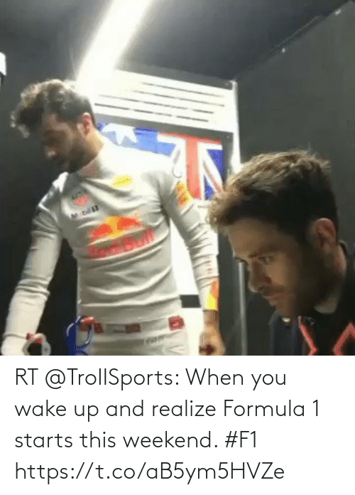 when you wake up: RT @TroIISports: When you wake up and realize Formula 1 starts this weekend. #F1  https://t.co/aB5ym5HVZe