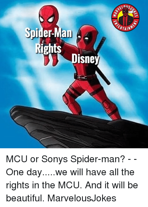Beautiful, Memes, and Spider: RTAIN  Spider-Man  ights  Disne MCU or Sonys Spider-man? - - One day.....we will have all the rights in the MCU. And it will be beautiful. MarvelousJokes