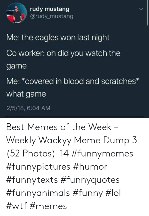 Mustang: rudy mustang  @rudy mustang  Me: the eagles won last night  Co worker: oh did you watch the  game  Me: *covered in blood and scratches  what game  2/5/18, 6:04 AM Best Memes of the Week – Weekly Wackyy Meme Dump 3 (52 Photos)-14 #funnymemes #funnypictures #humor #funnytexts #funnyquotes #funnyanimals #funny #lol #wtf #memes