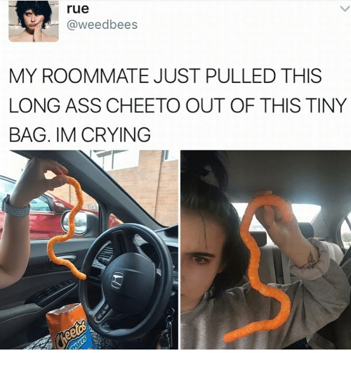 Ass, Crying, and Roommate: rue  @weedbees  MY ROOMMATE JUST PULLED THIS  LONG ASS CHEETO OUT OF THIS TINY  BAG. IM CRYING