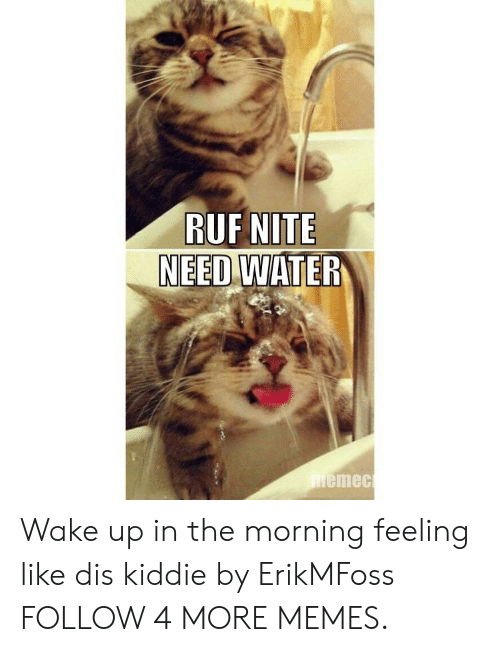 Kiddie: RUF NITE  NEED WATER  memec Wake up in the morning feeling like dis kiddie by ErikMFoss FOLLOW 4 MORE MEMES.
