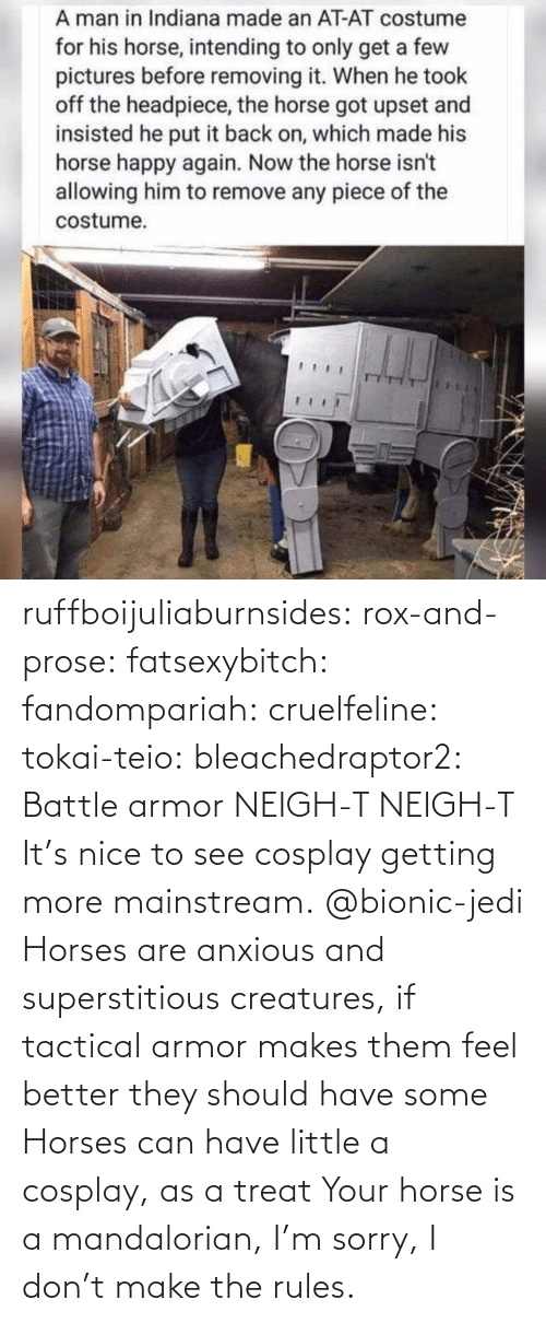 armor: ruffboijuliaburnsides:  rox-and-prose:  fatsexybitch:   fandompariah:  cruelfeline:  tokai-teio:  bleachedraptor2: Battle armor    NEIGH-T  NEIGH-T    It's nice to see cosplay getting more mainstream.    @bionic-jedi     Horses are anxious and superstitious creatures, if tactical armor makes them feel better they should have some    Horses can have little a cosplay, as a treat  Your horse is a mandalorian, I'm sorry, I don't make the rules.