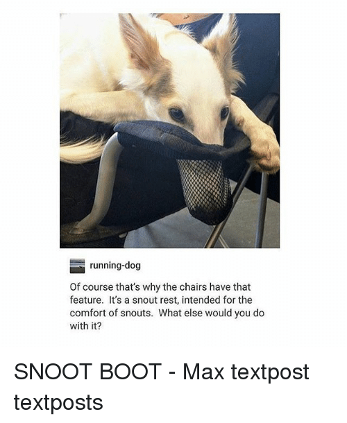 Memes, Running, and 🤖: running-dog  Of course that's why the chairs have that  feature. It's a snout rest, intended for the  comfort of snouts. What else would you do  with it? SNOOT BOOT - Max textpost textposts