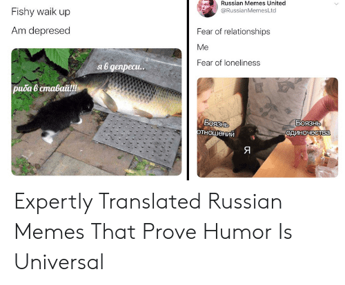 Russianmemesltd: Russian Memes United  @RussianMemesLtd  Fishy waik up  Am depresed  Fear of relationships  Ме  Fear of loneliness  яв депреси..  риба в ставай!  Воязнь  отношений  Боязнь  одиночества  Я Expertly Translated Russian Memes That Prove Humor Is Universal