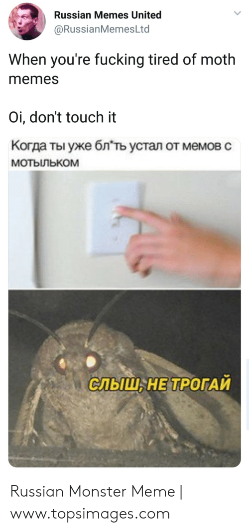 Russianmemesltd: Russian Memes United  @RussianMemesLtd  When you're fucking tired of moth  memes  Oi, don't touch it  Когда ты уже блть устал от мемов с  мотыльком  СЛЬШ, НЕ ТРОГАИ Russian Monster Meme | www.topsimages.com