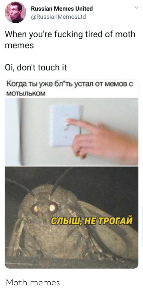 Russianmemesltd: Russian Memes United  @RussianMemesLtd  When you're fucking tired of moth  memes  Oi, don't touch it  Когда ты уже блть устал от мемов с  мотыльком  СЛЬШ, НЕ ТРОГАИ Moth memes