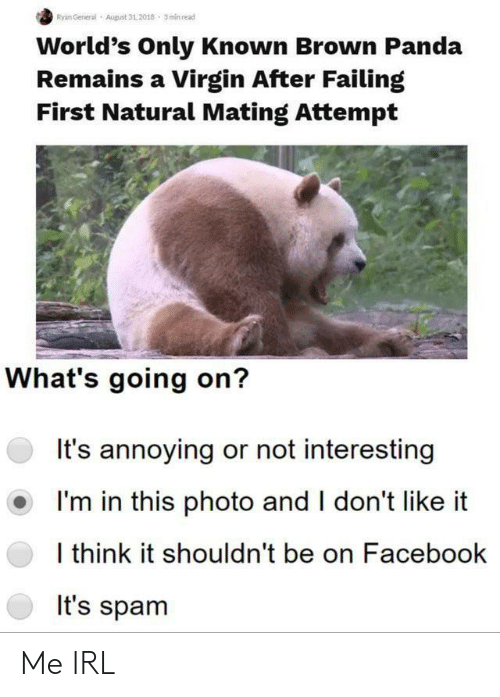 Facebook, Virgin, and Panda: Ryan General  August 31,2018 3min read  World's Only Known Brown Panda  Remains a Virgin After Failing  First Natural Mating Attempt  What's going on?  It's annoying or not interesting  I'm in this photo and I don't like  I think it shouldn't be on Facebook  It's spam Me IRL