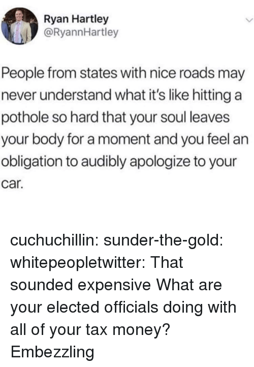 Tax Money: Ryan Hartley  @RyannHartley  People from states with nice roads may  never understand what it's like hitting a  pothole so hard that your soul leaves  your body for a moment and you feel an  obligation to audibly apologize to your  car. cuchuchillin: sunder-the-gold:  whitepeopletwitter: That sounded expensive  What are your elected officials doing with all of your tax money?   Embezzling