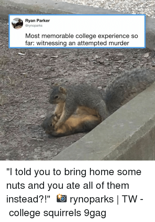"""9gag, College, and Memes: Ryan Parker  @rynoparks  Most memorable college experience so  far: witnessing an attempted murder """"I told you to bring home some nuts and you ate all of them instead?!""""⠀ 📸 rynoparks 