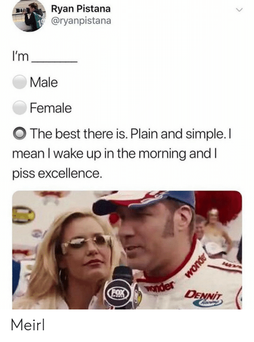Best, Mean, and Wonder: Ryan Pistana  @ryanpistana  I'm  Male  Female  The best there is. Plain and simple. I  mean I wake up in the morning and I  piss excellence.  Wonder  OX  DENNIT Meirl