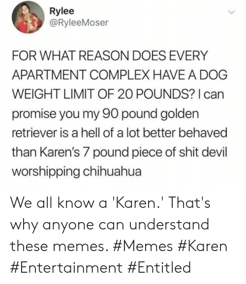 Complex: Rylee  @RyleeMoser  FOR WHAT REASON DOES EVERY  APARTMENT COMPLEX HAVE A DOG  WEIGHT LIMIT OF 20 POUNDS? I can  promise you my 90 pound golden  retriever is a hell of a lot better behaved  than Karen's 7 pound piece of shit devil  worshipping chihuahua We all know a 'Karen.' That's why anyone can understand these memes. #Memes #Karen #Entertainment #Entitled