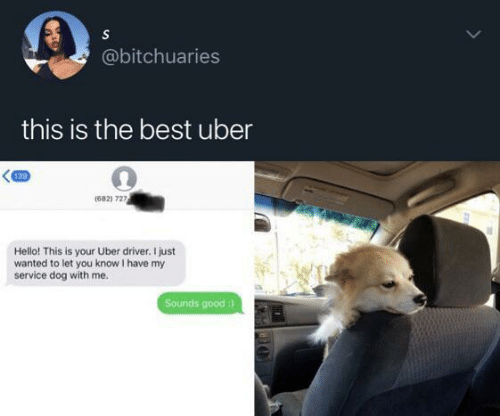 Hello, Uber, and Best: S  @bitchuaries  this is the best uber  139  (682) 727  Hello! This is your Uber driver. I just  wanted to let you know I have my  service dog with me.  Sounds good :