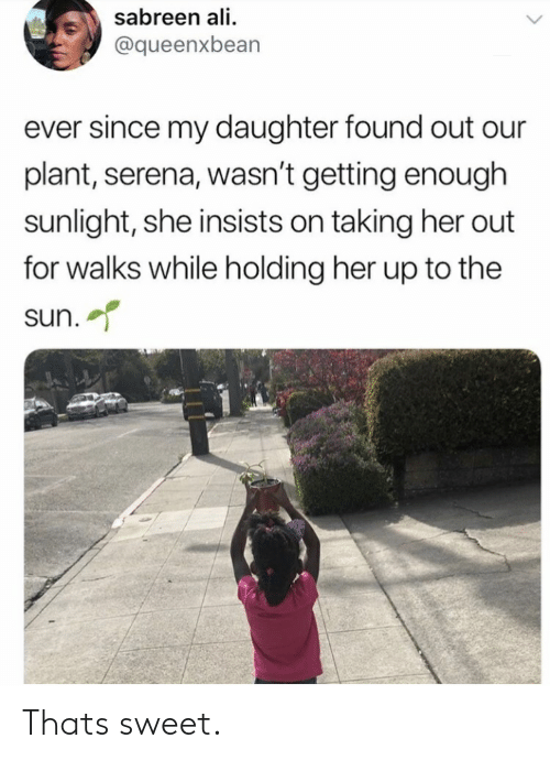 Ali, Her, and Sun: sabreen ali  @queenxbean  ever since my daughter found out our  plant, serena, wasn't getting enough  sunlight, she insists on taking her out  for walks while holding her up to the  sun. Thats sweet.