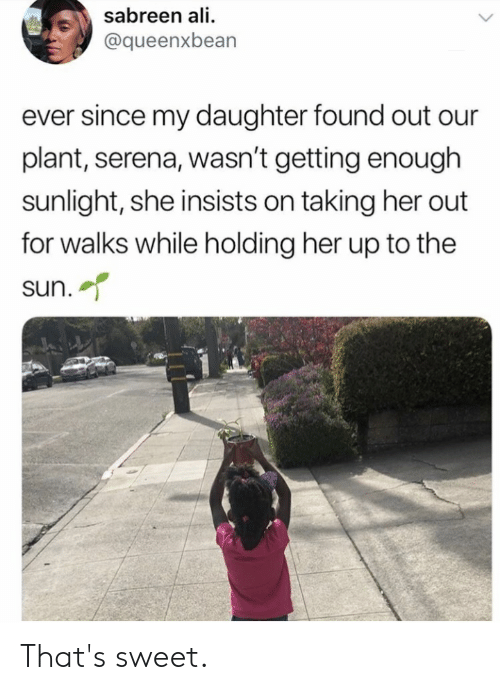 Ali, Her, and Sun: sabreen ali  @queenxbean  ever since my daughter found out our  plant, serena, wasn't getting enough  sunlight, she insists on taking her out  for walks while holding her up to the  sun. That's sweet.