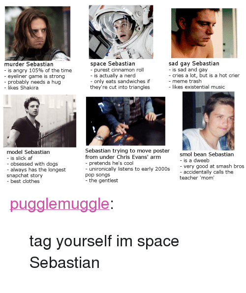 """Meme Trash: sad gay Sebastian  - is sad and gay  murder Sebastian  space Sebastian  purest cinnamon roll  is angry 105% of the time  eyeliner game is strong  probably needs a hug  cries a lot, but is a hot crier  - meme trash  - likes existential music  is actually a nerd  only eats sandwiches if  they're cut into triangles  - likes Shakira  model Sebastian  - is slick af  Sebastian trying to move poster  from under Chris Evans' arm  smol bean Sebastian  - is a dweeb  - very good at smash bros  - accidentally calls the  teacher 'mom'  obsessed with dogs  always has the longest  pretends he's cool  unironically listens to early 2000s  snapchat story  pop songs  - the gentlest  best clothes <p><a class=""""tumblr_blog"""" href=""""http://pugglemuggle.tumblr.com/post/138119488618"""">pugglemuggle</a>:</p> <blockquote> <p>tag yourself im space Sebastian<br/></p> </blockquote>"""