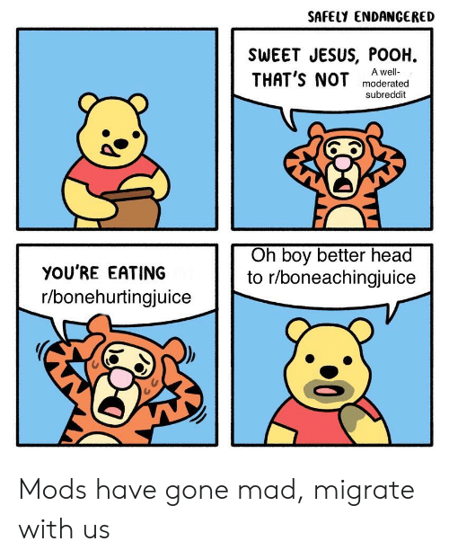 Jesus Pooh: SAFELY ENDANGERED  SWEET JESUS, POOH  THAT'S NOT  A well-  moderated  subreddit  Oh boy better head  to r/boneachingjuice  YOU'RE EATING  r/bonehurtingjuice Mods have gone mad, migrate with us