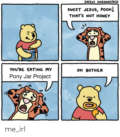 Jesus Pooh: SAFELY ENDANGERED  SWEET JESUS, POOH!  THAT'S NOT HONEY  YOU'RE EATING MY  он вотнER  Pony Jar Project me_irl