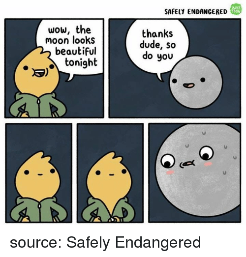Mooned: SAFELY ENDANGERED  WEB  TOON  wow, the  moon looks  beautiful  thanks  dude, so  do you  toni9  3) source: Safely Endangered