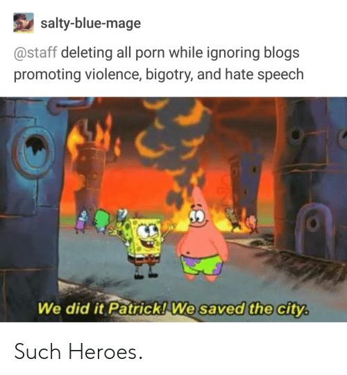 Bigotry: salty-blue-mage  @staff deleting all porn while ignoring blogs  promoting violence, bigotry, and hate speech  We did it Patrick!We saved the city Such Heroes.