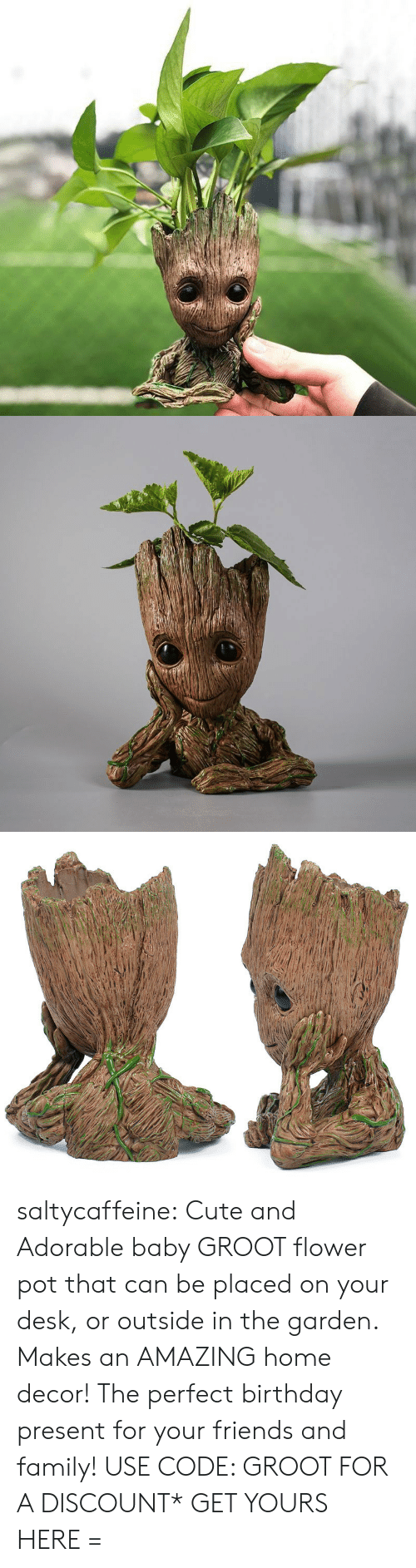 Birthday, Cute, and Family: saltycaffeine:  Cute and Adorable baby GROOT flower pot that can be placed on your desk, or outside in the garden. Makes an AMAZING home decor! The perfect birthday present for your friends and family! USE CODE: GROOT FOR A DISCOUNT* GET YOURS HERE =