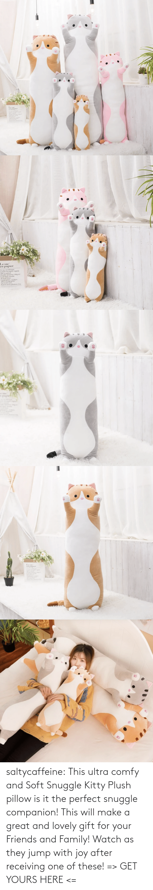 jump: saltycaffeine: This ultra comfy and Soft Snuggle Kitty Plush pillow is it the perfect snuggle companion! This will make a great and lovely gift for your Friends and Family! Watch as they jump with joy after receiving one of these! => GET YOURS HERE <=