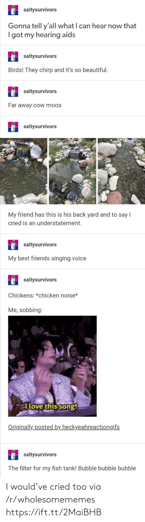 Can Hear: saltysurvivors  Gonna tell y'all what I can hear now that  got my hearing aids  saltysurvivors  Birds! They chirp and it's so beautiful.  saltysurvivors  Far away cOw moos  saltysurvivors  My friend has this is his back yard and to say  cried is an understatement.  saltysurvivors  My best friends singing voice  saltysurvivors  Chickens: *chicken noise*  Me, sobbing:  Tlove this song!  Originally posted by heckyeahreactiongifs  saltysurvivors  The filter for my fish tank! Bubble bubble bubble I would've cried too via /r/wholesomememes https://ift.tt/2MaiBHB